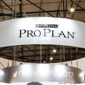 Proplan 1 day 52