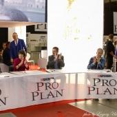 Proplan Final 11