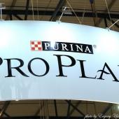 Proplan Final 18