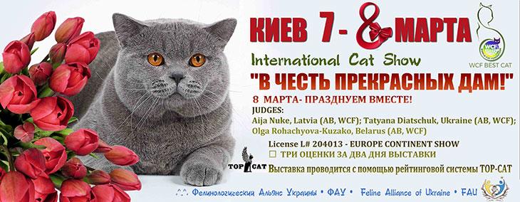 Выставка котов, Киев, Украина, 2020