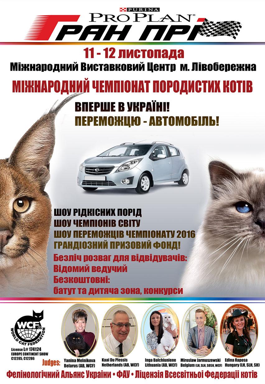 Выставка кошек 11-12 ноября 2017, Киев