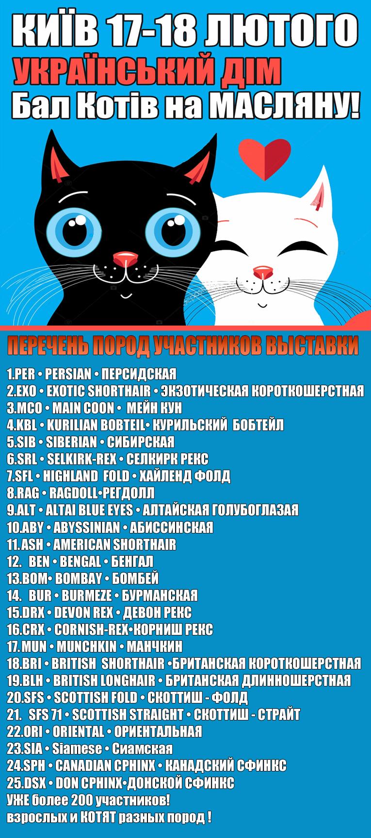 Породы котов на Выставке кошек 17-18 февраля 2018 года. Киев. Фелинологический альянс Украины.
