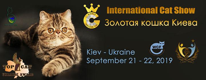 Выставка котов, Киев, Украина, 2019